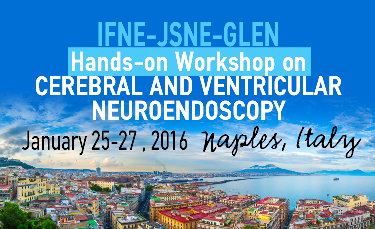 IFNE-JSNE-GLEN Hands-on workshop on cerebral and ventricular neuroendoscopy