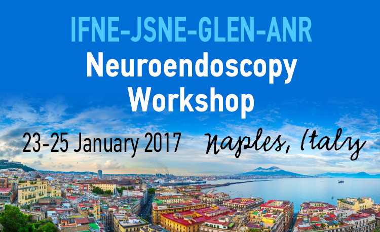 11  IFNE-JSNE-GLEN-ANR neuroendoscopy workshop